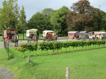 Horse and carts at Muckross estate